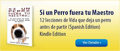 banner libro 2