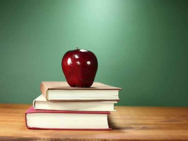 ¿Mentor o Maestro? Cómo orientar el aprendizaje en la vida
