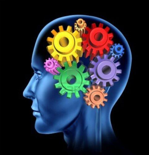 Procesos mentales del profesional contemporáneo